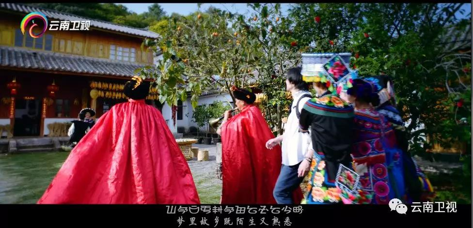 《彝乡之恋》,一曲从彩云南到东海滨的赞歌
